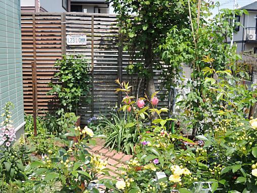 4月26日 東の庭