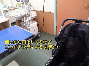 fc2_2014-09-11_05-49-05-775.jpg