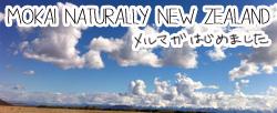 羊の国のラブラドール絵日記シニア!!「漫画みたいな・・・」Mokaiバナー