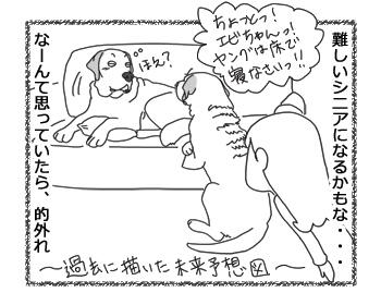 羊の国のラブラドール絵日記シニア!!「13歳のかわいいシニア」5
