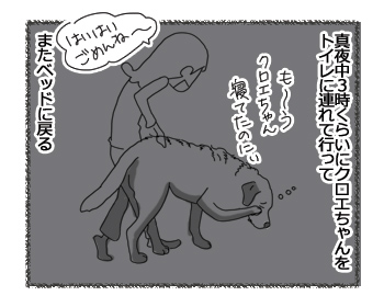 羊の国のラブラドール絵日記シニア!!「真夜中の幸せ」1