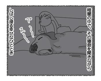 羊の国のラブラドール絵日記シニア!!「真夜中の幸せ」3