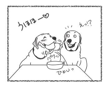 羊の国のラブラドール絵日記シニア!!「そっちかい!」3