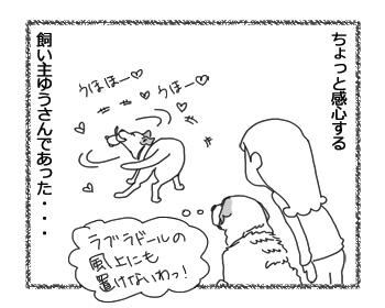 羊の国のラブラドール絵日記シニア!!「そっちかい!」4