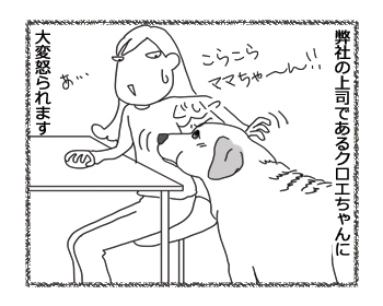 羊の国のラブラドール絵日記シニア!!「上司クロエ」2