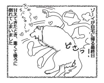 羊の国のラブラドール絵日記シニア!!「天然は最大の・・・?」1ミニ