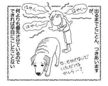羊の国のラブラドール絵日記シニア!!「朝の最優先事項」3