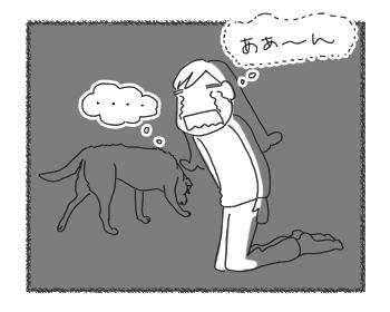 羊の国のラブラドール絵日記シニア!!「時差って何よ!?」3