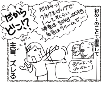 羊の国のラブラドール絵日記シニア!!「人生初の!」4