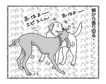 羊の国のラブラドール絵日記シニア!!「先輩風大雨注意報」2