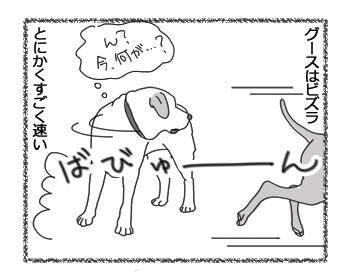 羊の国のラブラドール絵日記シニア!!「ビズラなグース」1