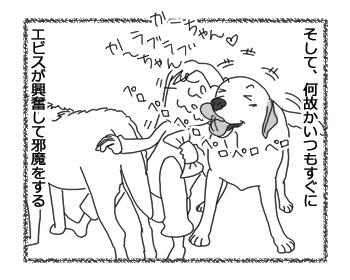 羊の国のラブラドール絵日記シニア!!「まさかな疑惑」2