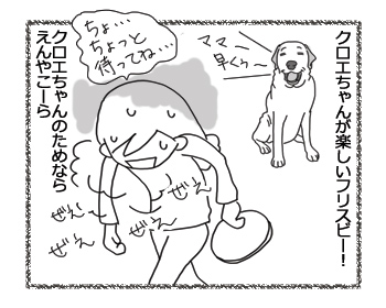 羊の国のラブラドール絵日記シニア!!「フリスビー新ルール」4