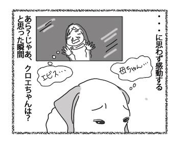 羊の国のラブラドール絵日記シニア!!「オンラインショッピング?」3
