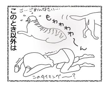 羊の国のラブラドール絵日記シニア!!「一服の・・・?」4