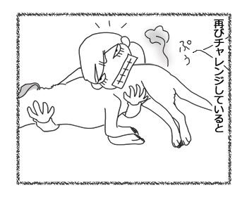 羊の国のラブラドール絵日記シニア!!「敵もひるものPart2」3