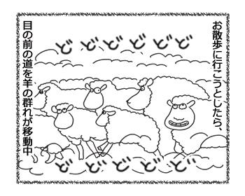 羊の国のラブラドール絵日記シニア!!「三犬三様」1