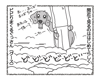 羊の国のラブラドール絵日記シニア!!「三犬三様」3