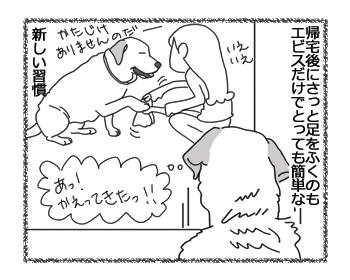 羊の国のラブラドール絵日記シニア!!「いつもの習慣」3