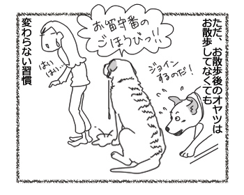 羊の国のラブラドール絵日記シニア!!「いつもの習慣」4