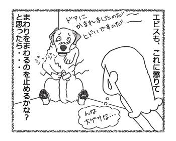 羊の国のラブラドール絵日記シニア!!「はやく走れば憂いなし」3