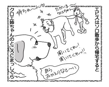 羊の国のラブラドール絵日記シニア!!「クロエ心とうわの空」1