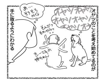 羊の国のラブラドール絵日記シニア!!「クロエ心とうわの空」4