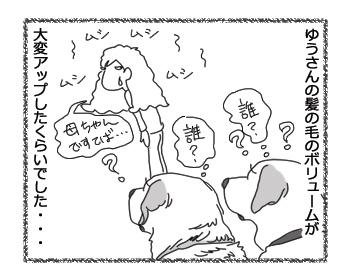 羊の国のラブラドール絵日記シニア!!「台風一過で・・・」4