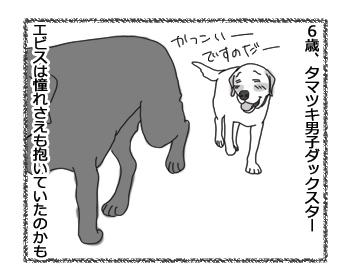 羊の国のラブラドール絵日記シニア!!「ところかわれば、犬もかわる」2
