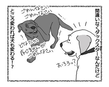 羊の国のラブラドール絵日記シニア!!「ところかわれば、犬もかわる」4