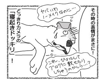 羊の国のラブラドール絵日記シニア!!「寝起きドッキリ!」4