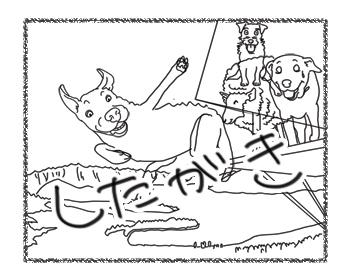 羊の国のラブラドール絵日記シニア!!「羊の国のロバ」写真日記6