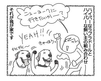 羊の国のラブラドール絵日記シニア!!「贅沢な飼い主」1