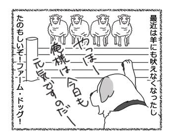 羊の国のラブラドール絵日記シニア!!「エビスの成長」4