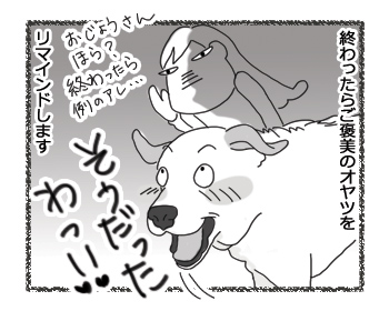 羊の国のラブラドール絵日記シニア!!「ささやかな・・・?」2