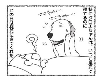 羊の国のラブラドール絵日記シニア!!「風邪のため延期」2