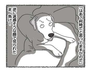 羊の国のラブラドール絵日記シニア!!「4時ですよーだ」4
