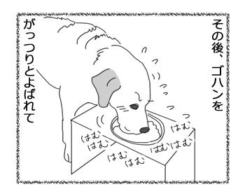 羊の国のラブラドール絵日記シニア!!「予定台無し!」2