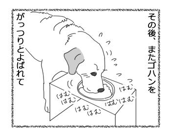 羊の国のラブラドール絵日記シニア!!「予定台無し!」4