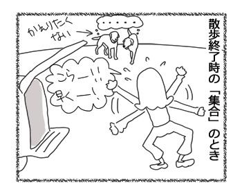 羊の国のラブラドール絵日記シニア!!「そりゃないぜ、姉ちゃん!」2