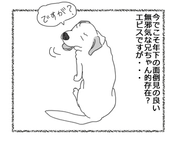 羊の国のラブラドール絵日記シニア!!「パピーの思い出」1