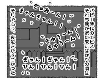 羊の国のラブラドール絵日記シニア!!「パピーの思い出」2