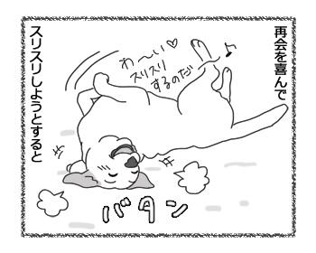 羊の国のラブラドール絵日記シニア!!「冬の朝の凶器」3