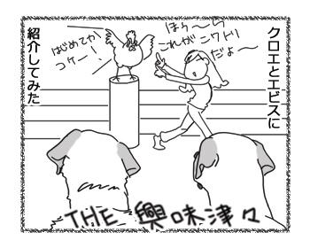 羊の国のラブラドール絵日記シニア!!「エキサイティング朝」3