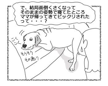羊の国のラブラドール絵日記シニア!!「悩めるお年頃」4
