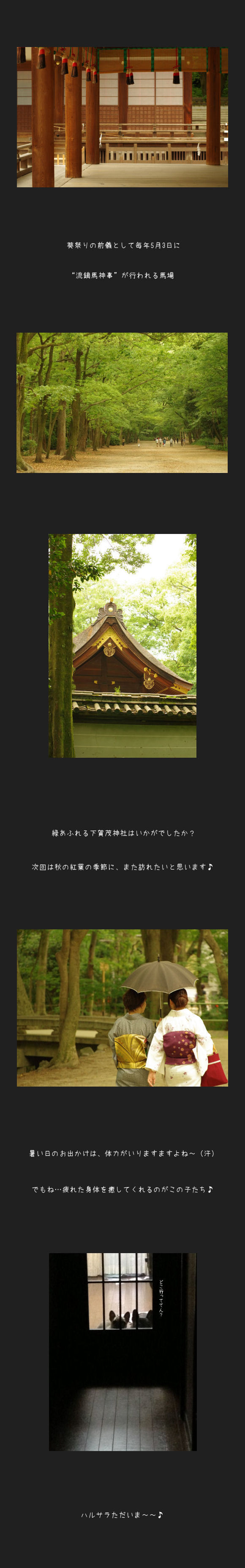 下賀茂神社C