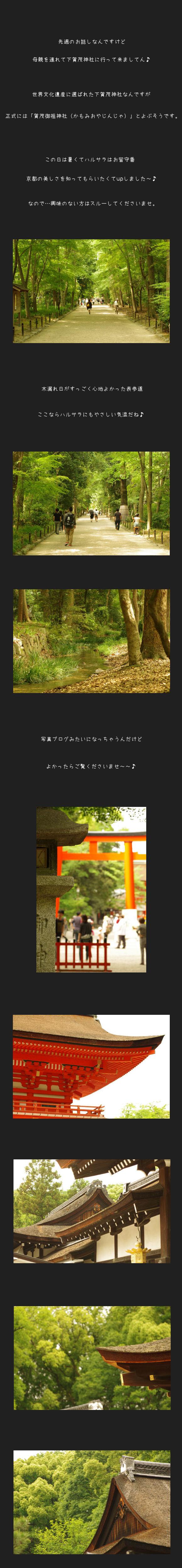 下賀茂神社A