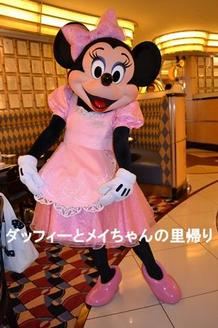 2014-2-22-23 シェフミ ミニー (2)