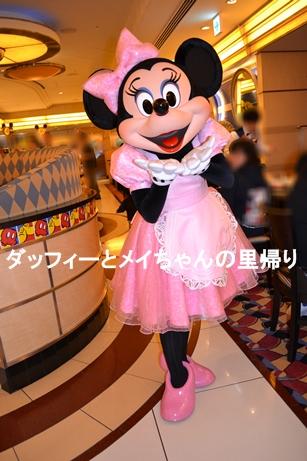 2014-2-22-23 シェフミ ミニー (1)
