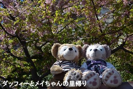 2014-3-22 3-24用 (5)